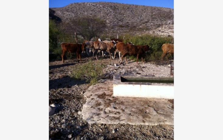Foto de rancho en venta en  , santa eulalia, acuña, coahuila de zaragoza, 788099 No. 02
