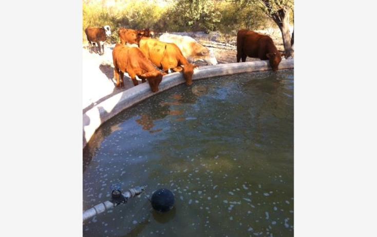 Foto de rancho en venta en  , santa eulalia, acuña, coahuila de zaragoza, 788099 No. 07