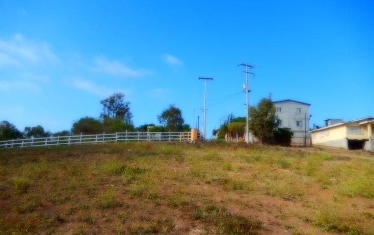 Foto de terreno comercial en renta en  , santa fe, tijuana, baja california, 1344103 No. 03