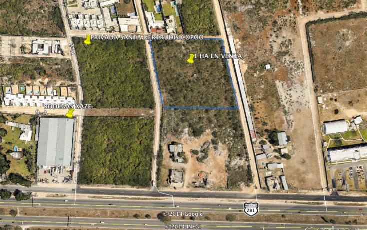 Foto de terreno habitacional en venta en  , santa gertrudis copo, mérida, yucatán, 1092555 No. 04