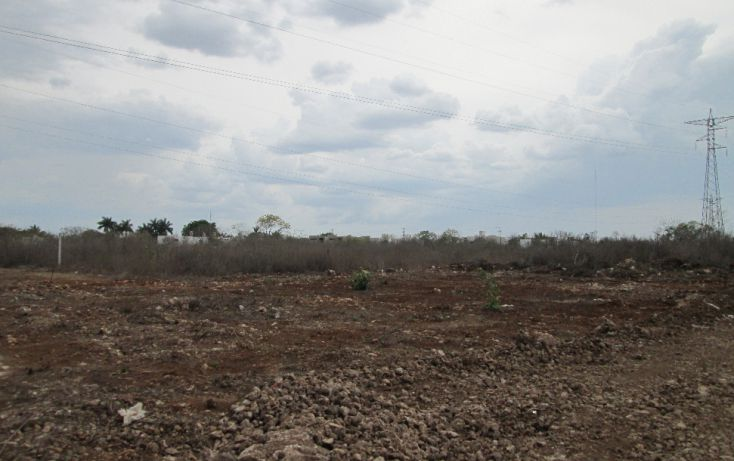 Foto de terreno habitacional en venta en, santa gertrudis copo, mérida, yucatán, 1099803 no 04