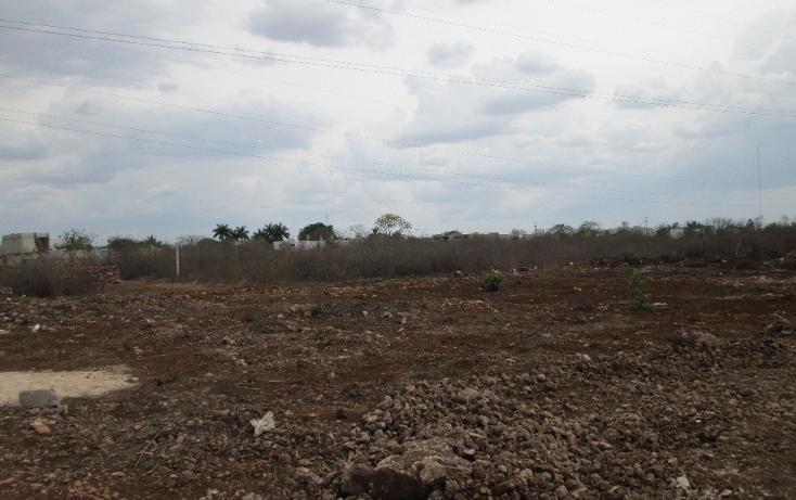 Foto de terreno habitacional en venta en  , santa gertrudis copo, m?rida, yucat?n, 1099803 No. 05