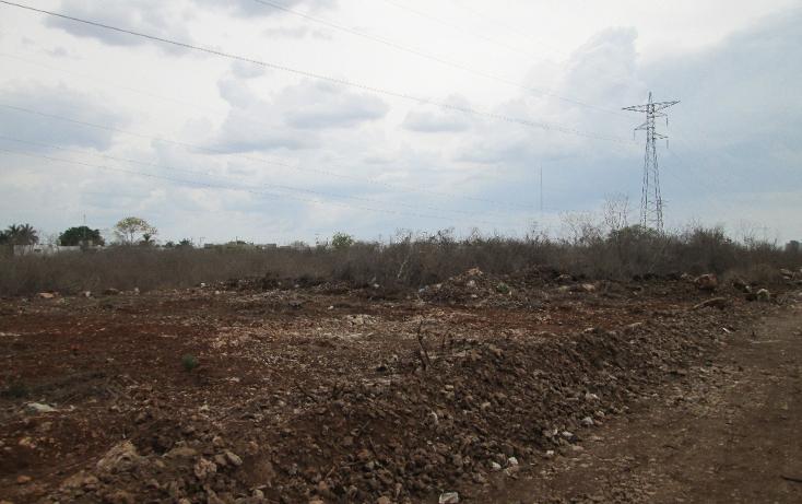 Foto de terreno habitacional en venta en  , santa gertrudis copo, m?rida, yucat?n, 1099803 No. 06