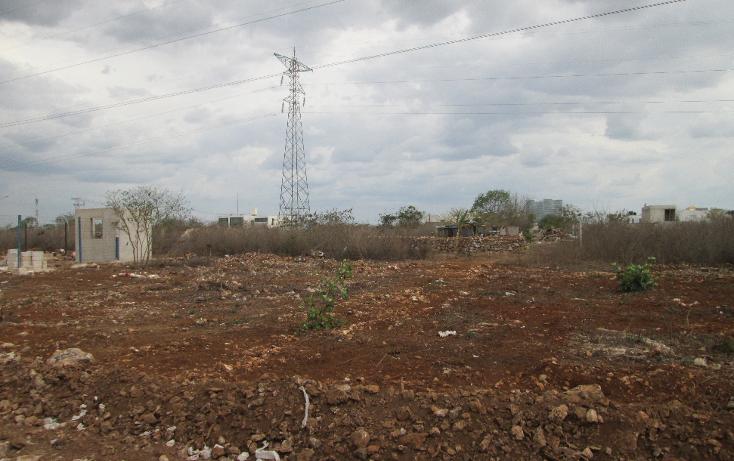 Foto de terreno habitacional en venta en  , santa gertrudis copo, m?rida, yucat?n, 1099803 No. 08