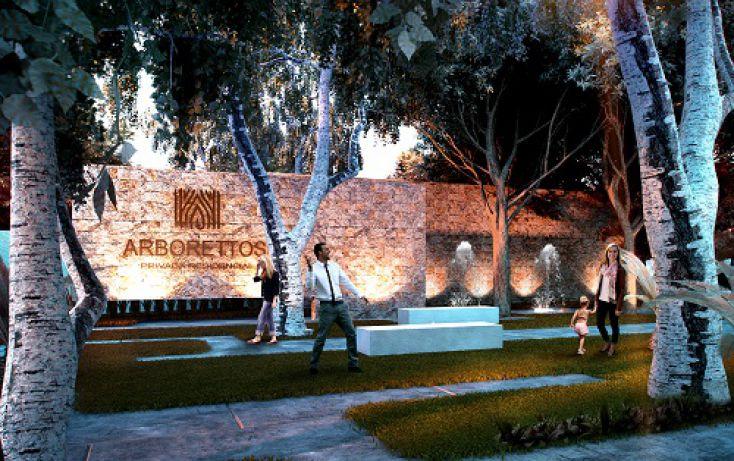 Foto de casa en venta en, santa gertrudis copo, mérida, yucatán, 1135343 no 12