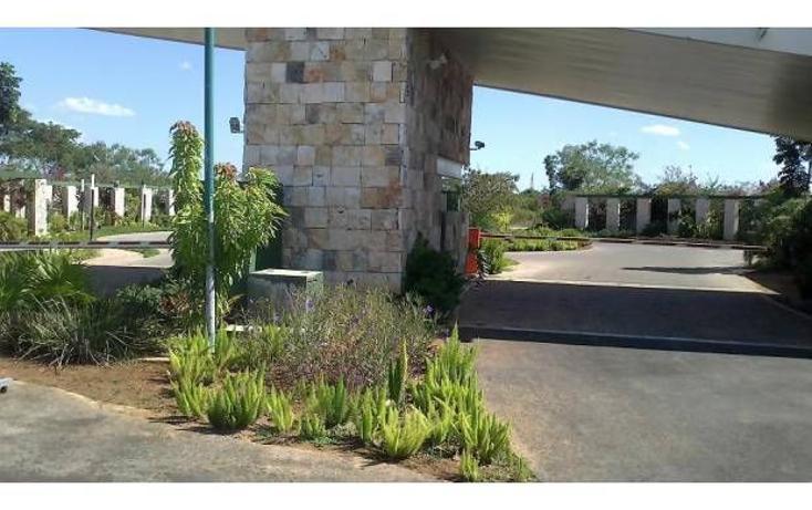 Foto de terreno habitacional en venta en  , santa gertrudis copo, mérida, yucatán, 1142605 No. 06
