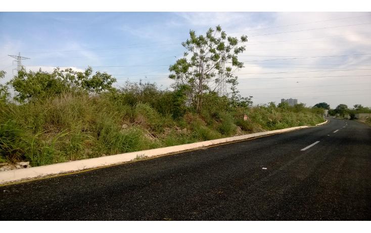 Foto de terreno habitacional en venta en  , santa gertrudis copo, mérida, yucatán, 1149715 No. 04