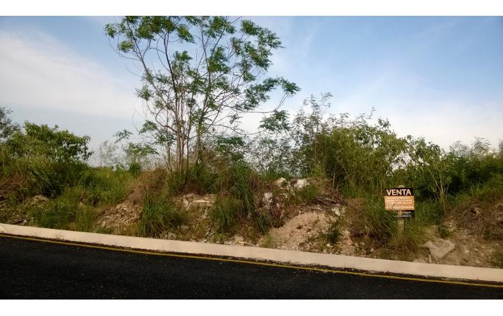 Foto de terreno habitacional en venta en  , santa gertrudis copo, mérida, yucatán, 1149715 No. 05
