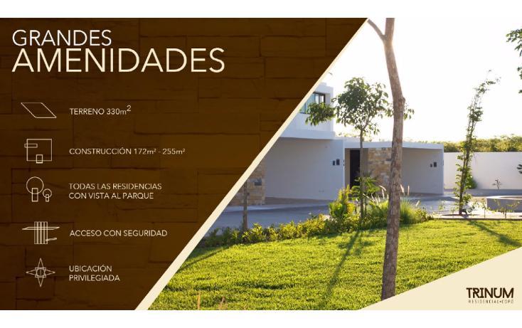 Foto de casa en venta en  , santa gertrudis copo, mérida, yucatán, 1150273 No. 08