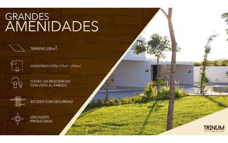 Foto de casa en condominio en venta en  , santa gertrudis copo, mérida, yucatán, 1162623 No. 10