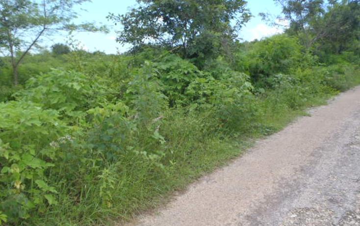 Foto de terreno habitacional en venta en  , santa gertrudis copo, mérida, yucatán, 1238839 No. 02