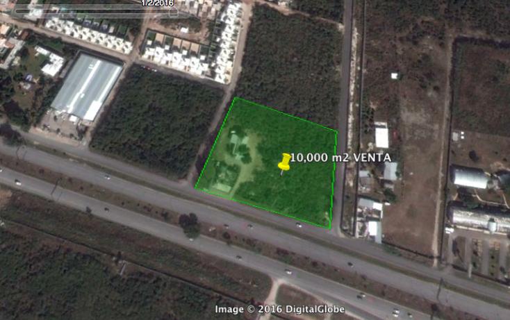Foto de terreno comercial en venta en  , santa gertrudis copo, mérida, yucatán, 1241215 No. 06