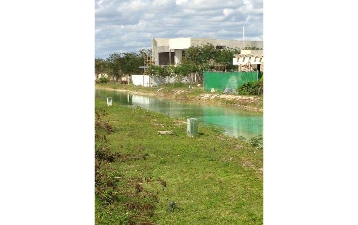 Foto de terreno habitacional en venta en  , santa gertrudis copo, m?rida, yucat?n, 1252727 No. 10