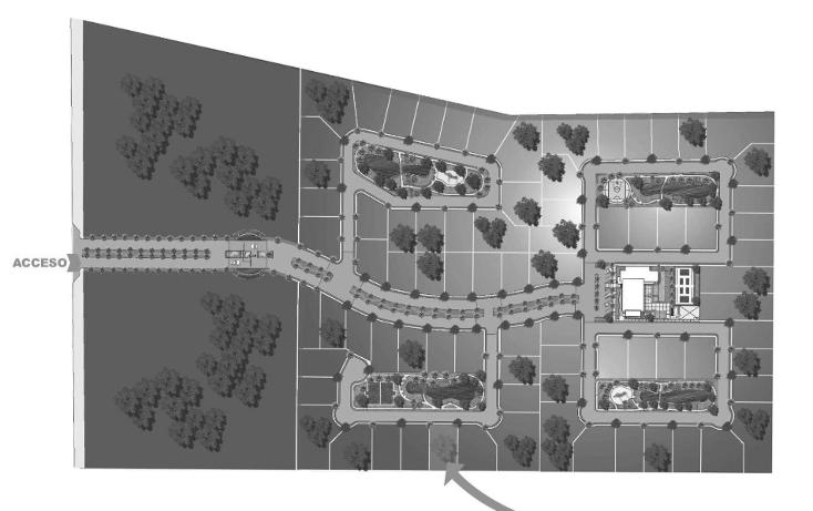 Foto de terreno habitacional en venta en  , santa gertrudis copo, mérida, yucatán, 1266517 No. 03