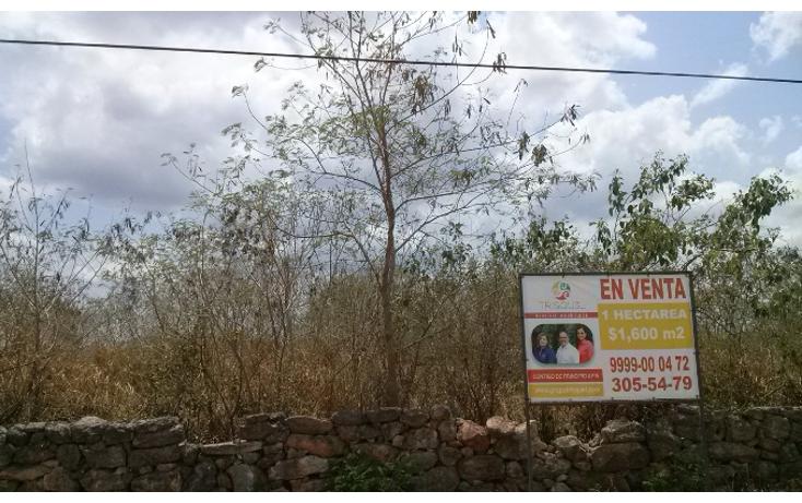 Foto de terreno habitacional en venta en  , santa gertrudis copo, mérida, yucatán, 1273895 No. 01