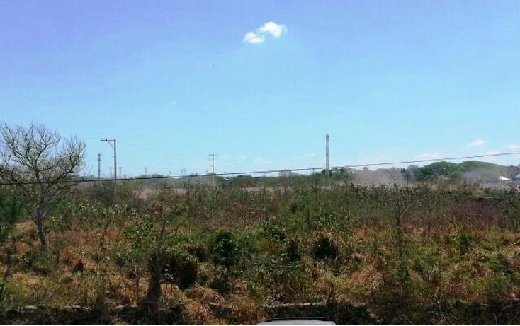 Foto de terreno habitacional en venta en  , santa gertrudis copo, mérida, yucatán, 1273895 No. 02