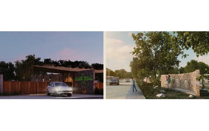 Foto de casa en venta en  , santa gertrudis copo, mérida, yucatán, 1296221 No. 04