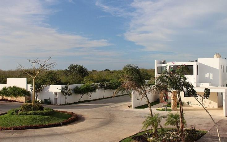 Foto de casa en venta en  , santa gertrudis copo, mérida, yucatán, 1416917 No. 04