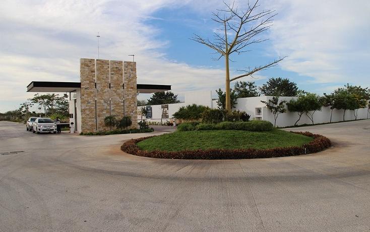 Foto de casa en venta en  , santa gertrudis copo, mérida, yucatán, 1416917 No. 07