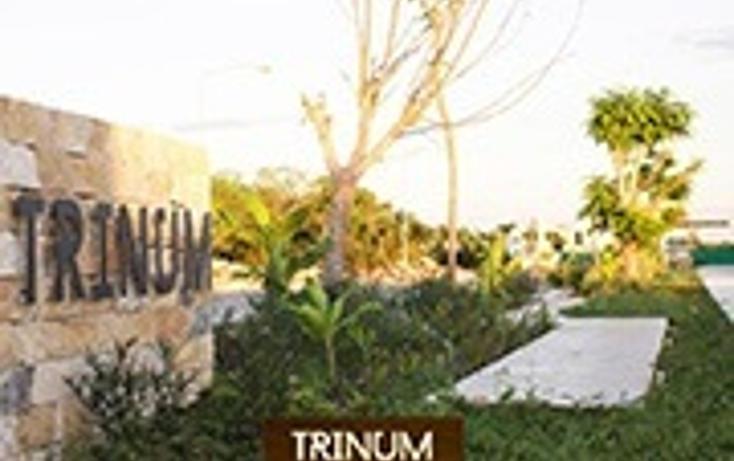 Foto de casa en venta en  , santa gertrudis copo, mérida, yucatán, 1477989 No. 04