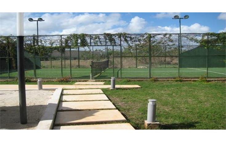 Foto de terreno comercial en venta en  , santa gertrudis copo, mérida, yucatán, 2003438 No. 06