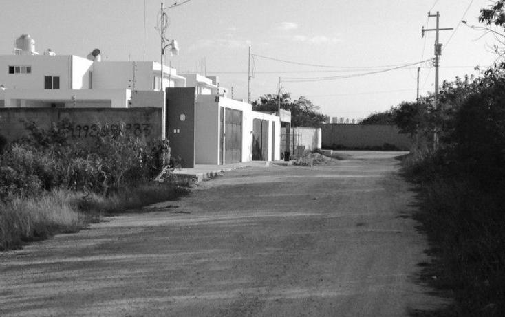 Foto de terreno habitacional en venta en  , santa gertrudis copo, mérida, yucatán, 2035482 No. 03