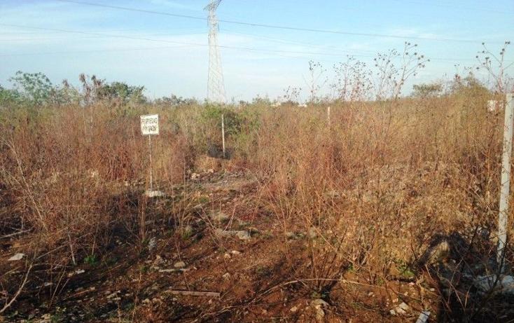 Foto de terreno habitacional en venta en  , santa gertrudis copo, mérida, yucatán, 2035482 No. 05