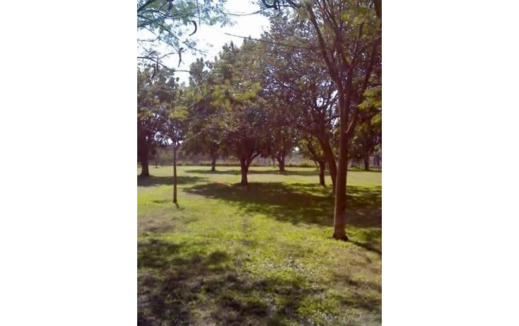Foto de terreno habitacional en venta en santa ines 0, oacalco, yautepec, morelos, 2651296 No. 09