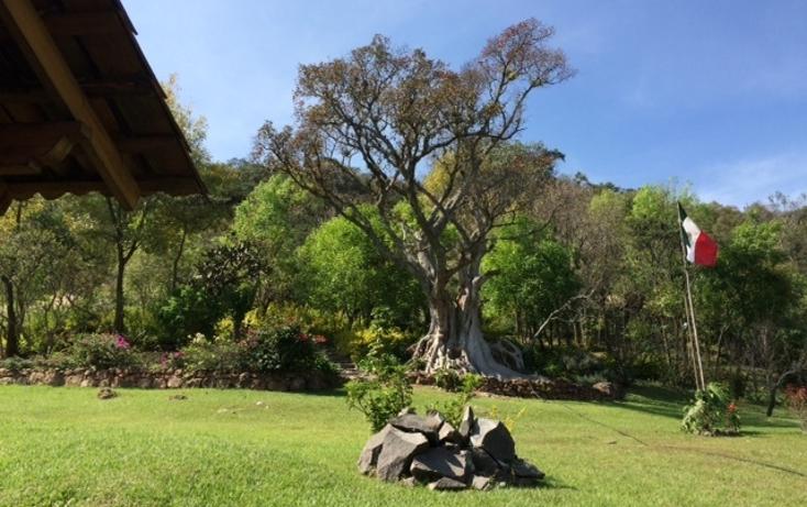 Foto de terreno habitacional en venta en  , santa magdalena tilostoc, valle de bravo, m?xico, 1615139 No. 02