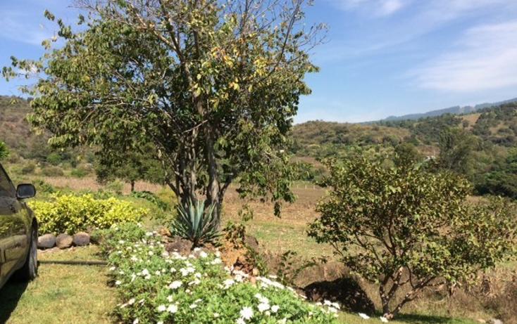 Foto de terreno habitacional en venta en  , santa magdalena tilostoc, valle de bravo, m?xico, 1615139 No. 05