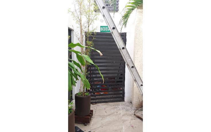 Foto de oficina en renta en  , santa margarita, carmen, campeche, 1183421 No. 07
