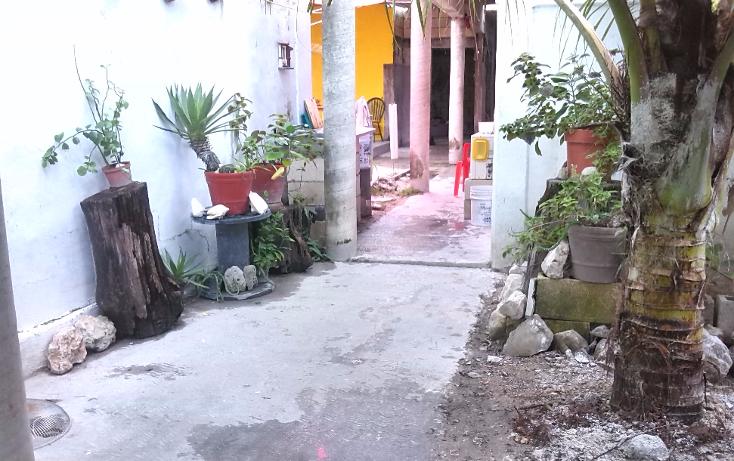 Foto de terreno comercial en venta en  , santa margarita, carmen, campeche, 1574484 No. 12