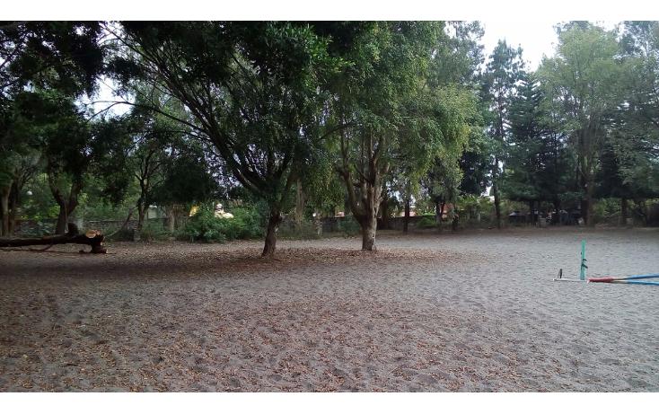 Foto de terreno habitacional en venta en  , santa mar?a ahuacatitl?n, cuernavaca, morelos, 1816002 No. 02