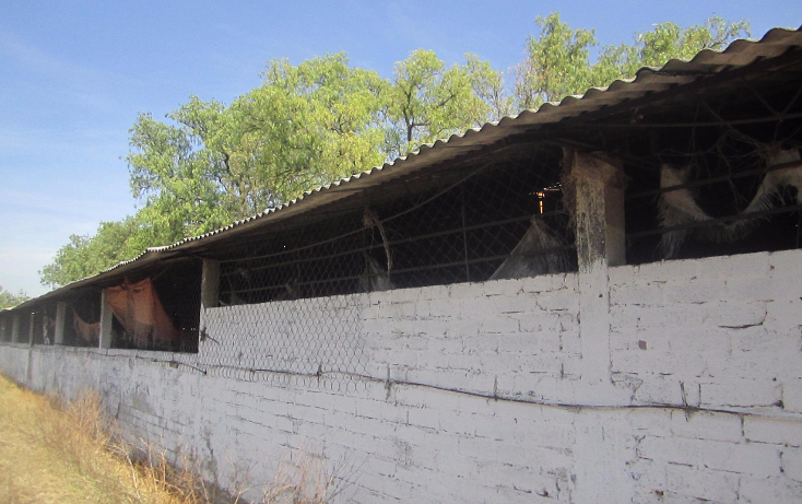 Foto de terreno habitacional en venta en  , santa maría cuevas, zumpango, méxico, 1469881 No. 04