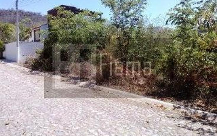 Foto de terreno habitacional en venta en  , santa maría del oro, santa maría del oro, nayarit, 1612090 No. 03