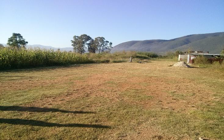 Foto de terreno habitacional en venta en  , santa maria del tule, santa mar?a del tule, oaxaca, 1391863 No. 03