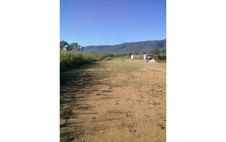 Foto de terreno habitacional en venta en  , santa maria del tule, santa mar?a del tule, oaxaca, 1391863 No. 04