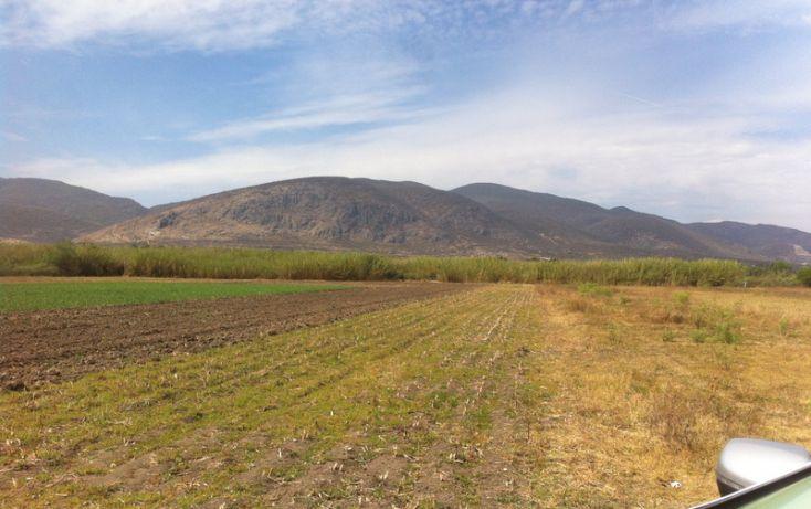 Foto de terreno habitacional en venta en, santa maría guelacé, santa maría guelacé, oaxaca, 1567557 no 01