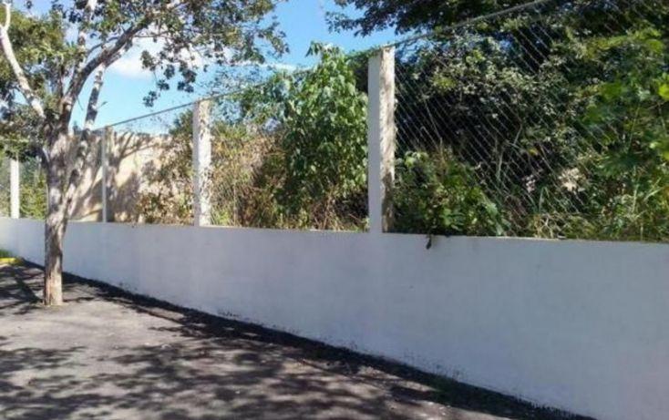 Foto de terreno habitacional en venta en, santa maria, mérida, yucatán, 1737166 no 03