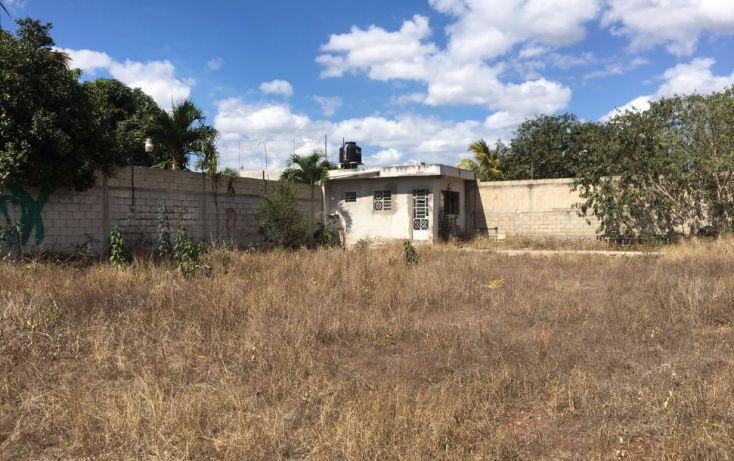 Foto de terreno habitacional en venta en, santa maria, mérida, yucatán, 2005828 no 04