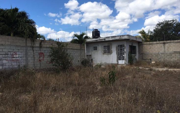 Foto de terreno habitacional en venta en  , santa maria, m?rida, yucat?n, 2005828 No. 05