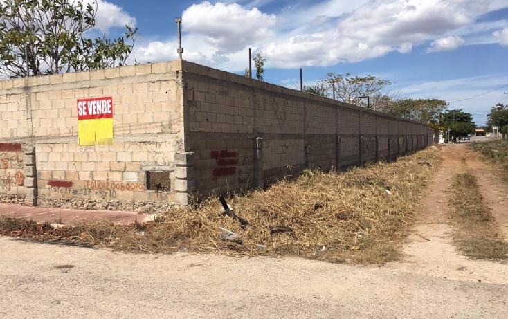 Foto de terreno habitacional en venta en  , santa maria, m?rida, yucat?n, 2005828 No. 06
