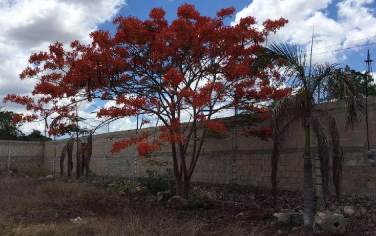 Foto de terreno habitacional en venta en, santa maria, mérida, yucatán, 2005828 no 07