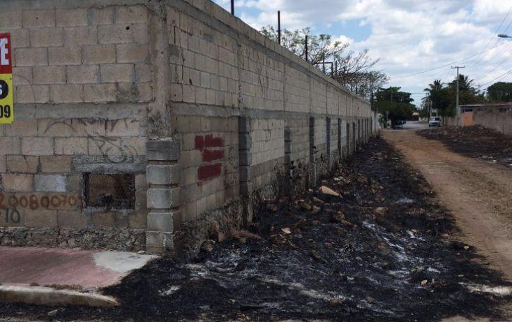 Foto de terreno habitacional en venta en, santa maria, mérida, yucatán, 2005828 no 08