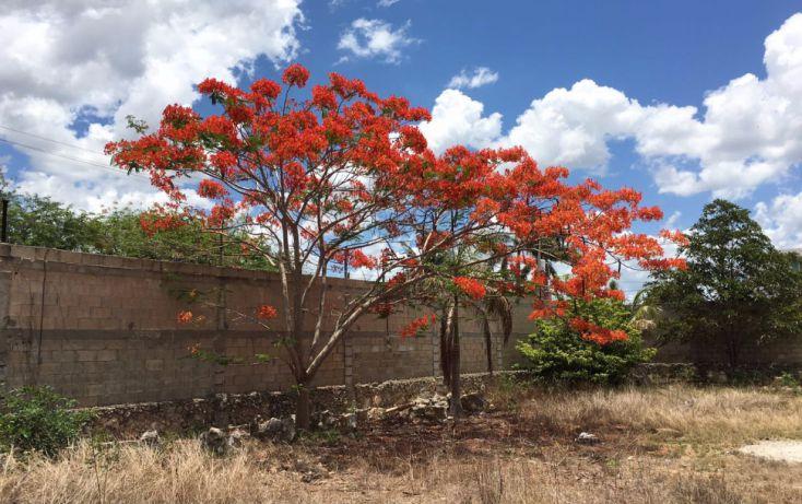Foto de terreno habitacional en venta en, santa maria, mérida, yucatán, 2005828 no 09