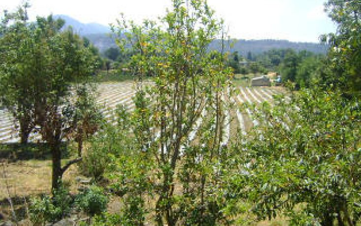 Foto de terreno habitacional en venta en santa maria pipioltepec sn sn, pipioltepec, valle de bravo, estado de méxico, 1698004 no 12