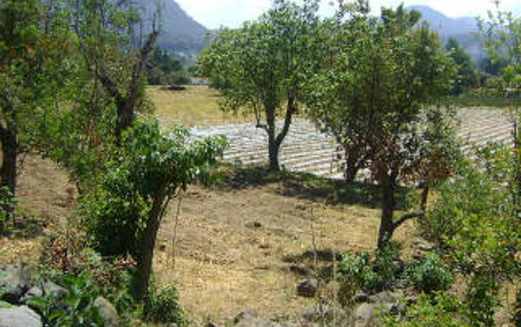 Foto de terreno habitacional en venta en  , pipioltepec, valle de bravo, méxico, 1698004 No. 03