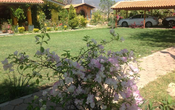 Foto de rancho en renta en  , santa maria, santa mar?a colotepec, oaxaca, 1094399 No. 04