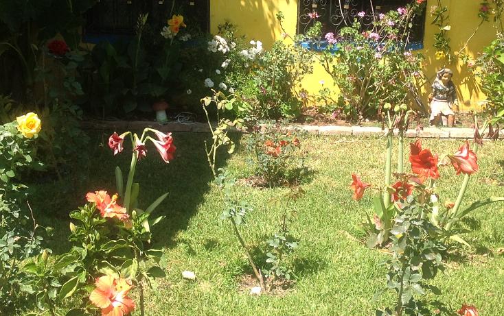Foto de rancho en renta en  , santa maria, santa mar?a colotepec, oaxaca, 1094399 No. 07