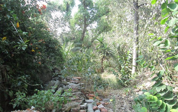 Foto de terreno habitacional en venta en  , santa maría tepepan, xochimilco, distrito federal, 944691 No. 09